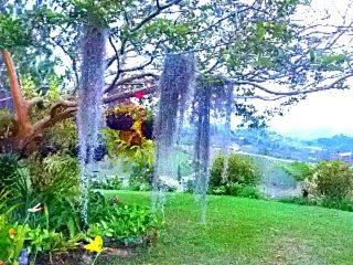 Jardín. vista al patio, Vista al Lago, Vista a la montaña.
