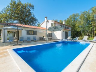 4 bedroom Villa in Santalezi, Istria, Croatia : ref 5364749