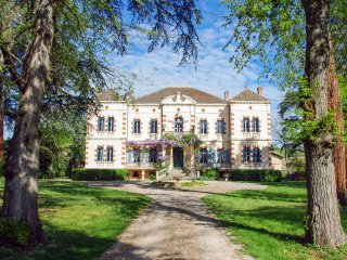 10 bedroom Chateau in Gaillac, Occitania, France : ref 5049473