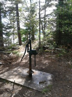 SPRING FED HAND PUMP    DELICIOUS