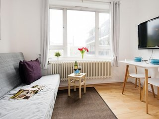 Chelsea Hortensia Road apartment in Wandsworth with WiFi.