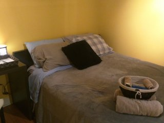 Cozy Private Suite w/ Queen Size Plush Bed & Cot, Sleeps 3!