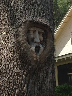 One of many 'Tree Spirits' carved into the oaks around the Island.  Have fun finding them all!