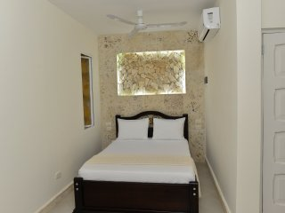 301 Studio Apartment