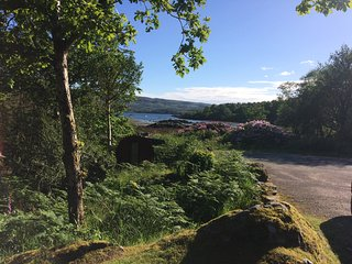 Ardnamurchan Wildlife Cottage - Pine Martens Galore - Glenborrodale Bay Highland