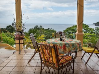 Ocean View, Walk to the Beach Vacation Rental Villa Vista Azul