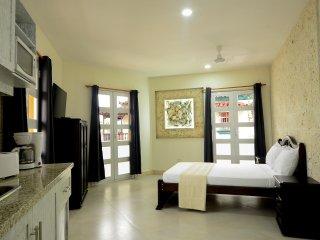303 Studio Apartment