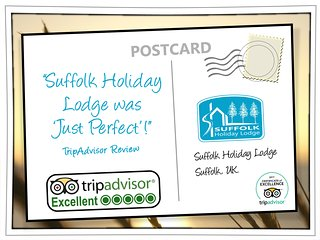 Positive feedback from our TripAdvisor reviews.