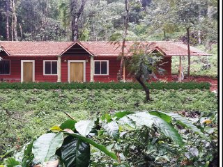 Canopy green homestay - Group Package