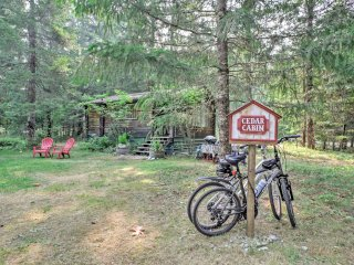 'Cedar Cabin' Cozy 1BR Packwood Cabin w/Mtn Views!