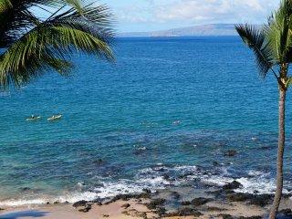 WAILEA BEACH CONDO! GORGEOUS NEW REMODEL! OCEAN END, RIGHT OVER THE BEACH!
