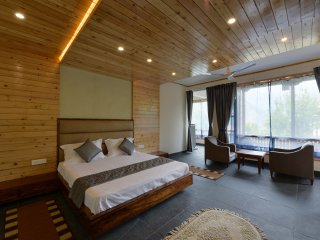 Luxury Studio House in Manali