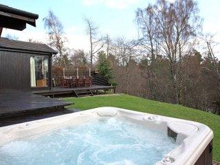 Ptarmigan Lodge - Hot Tub