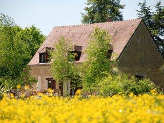 5 bedroom Villa in Moulins-Engilbert, Bourgogne-Franche-Comte, France : ref 5429