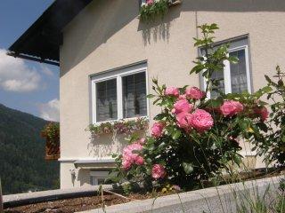 Appartement Brennseeblick