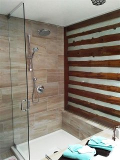 Double glass shower with rain shower head.