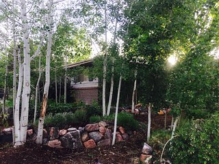 Boulder's Organic Oasis