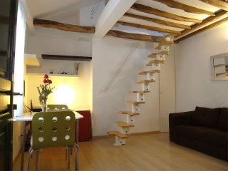 Lovely loft Ile Saint Louis