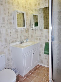 Guest Bathroom with shower, medicine cabinet and vanity.