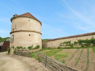 Chateau de Sermizelles #18088.1