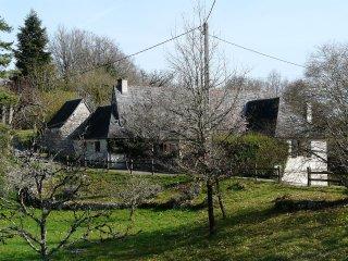 Le Beau Jardin #18070.1