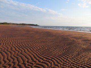 The best beach on PEI (though perhaps we are a bit biased) is only 100m away!