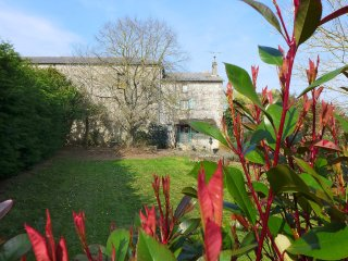 Le Jardin de Timothee #17472.1