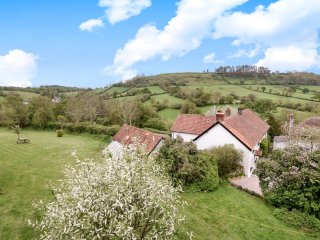 3 Bedroom Devon cottage with an acre of garden, log burner, village location