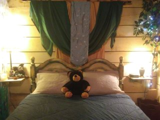 Rustic Birches Bdrm OR Green&Gold Bdrm in the Country 20 min south of Green Bay!