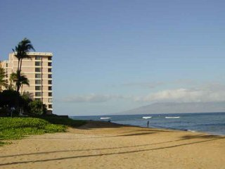 Penthouse Oceanfront Luxury Condo-Newly Remodeled & Upgraded-Best In Building