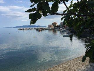 Appartamento centrale e spazioso, a 2 km da Opatija e 10 da Rijeka