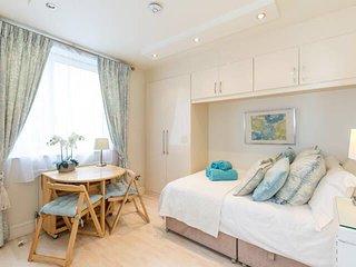 Stunning, cosy studio - Chelsea - 3rd floor