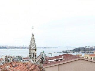 Galata Bosphorus