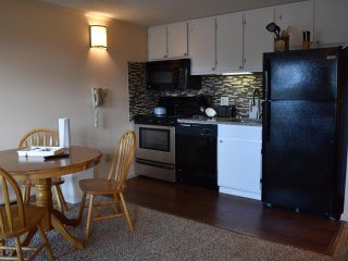 March MadnesSale! Free parking, Wifi and Hot Tub*: Renovated ML#117;1BR/1Bath*Sk