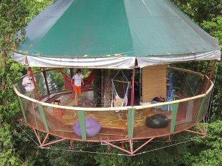 The Amazing Treehouse and Nature Observatorio in Manzanillo, Limon, Costa Rica