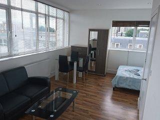 Splendid Apartment (9)