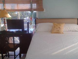 Modern, Cozy Azure Suite - New Kingston