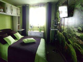 Appartement cossu et chaleureux pour des petits séjours