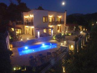 New Villa near the Springs! Ageri villa.