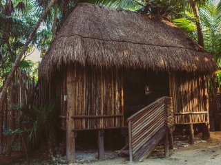 Eco Cabana in the Jungle next to the beach A
