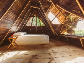 Attic Palapa Room in Mangrove Across Beach. Nature