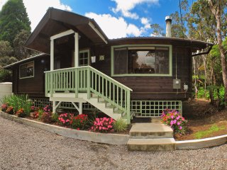 Hale Sweet Hale Log Cabin with Hot Tub!- As Seen on HGTV