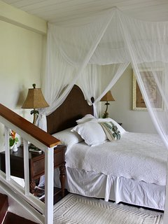 Paw Paw Tree Guestroom
