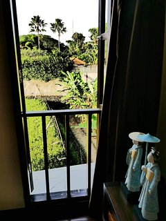 VIEW FROM JAPANESE ROOM