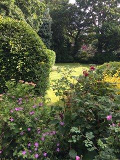 Half acre garden to enjoy