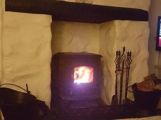 Roaring Woodburner fire