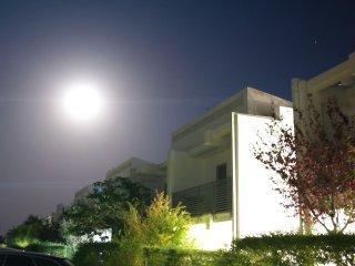 Tonio house