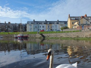 Aberystwyth Harbourside Apartment