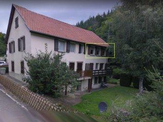 Appartement vacances Alsace
