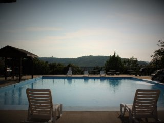 Luxury 3 bedroom Condo 2 miles from Silver Dollar City